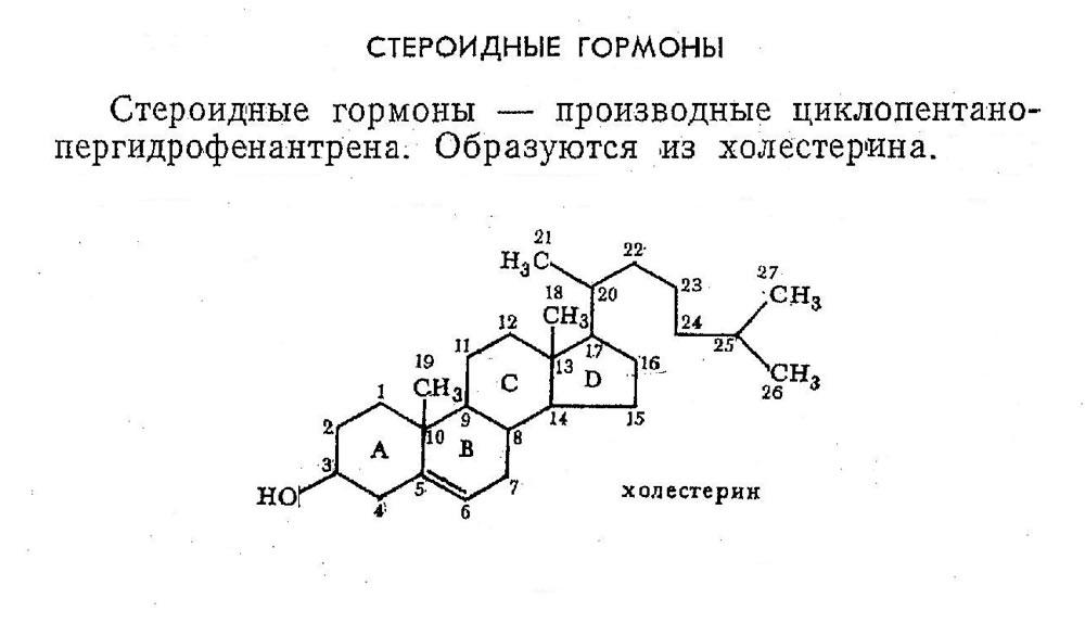 Стероидные гормоны, как причина появления прыщей